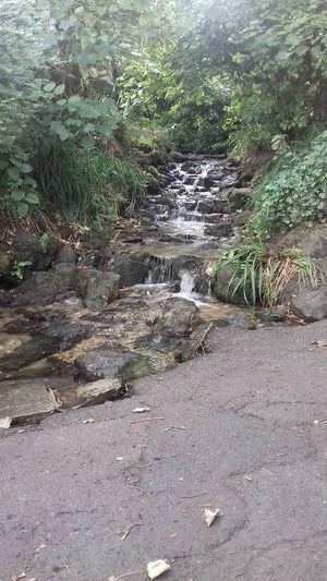 waterfall Waterfall Stones & Water Pathway Nature Stream