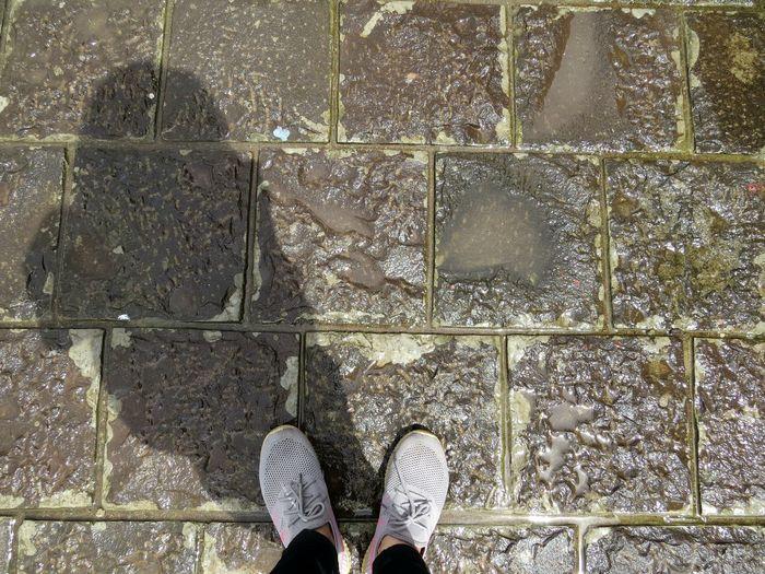 Shadow Travel