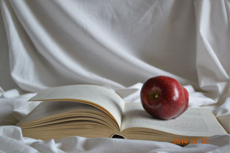 Book Cool Eat More Fruit Food And Drink Freshness Fruit Fruit Bowl Healthy Eating Light Love Life Nature Nature Photography Nature_collection Red Retro Ripe Selective Focus Sensitive Photo White Background
