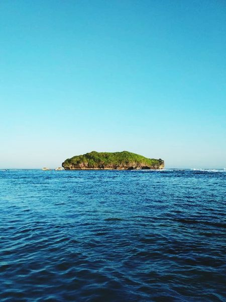 Sea Horizon Over Water Tranquil Scene Blue Clear Sky Scenics Nature Tranquility Water Outdoors Beach Beauty In Nature Summer Travel Destinations Vacations Indonesia Scenery Yogyakarta,indonesia Day Landscape Sky No People Tree EyeEmNewHere