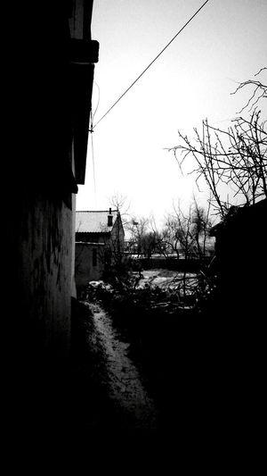晨 阴天 雪