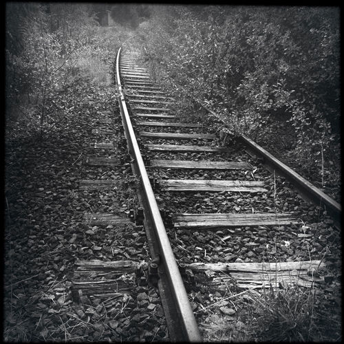 Abandoned rails leading to nowhere Abandoned Auto Post Production Filter Day Direction Forest Germany Growth Hipstamatic Land Metal Nature No People Outdoors Plant Rail Rail Transportation Railroad Track The Way Forward Track Tranquility Transfer Print Transportation Tree It's About The Journey
