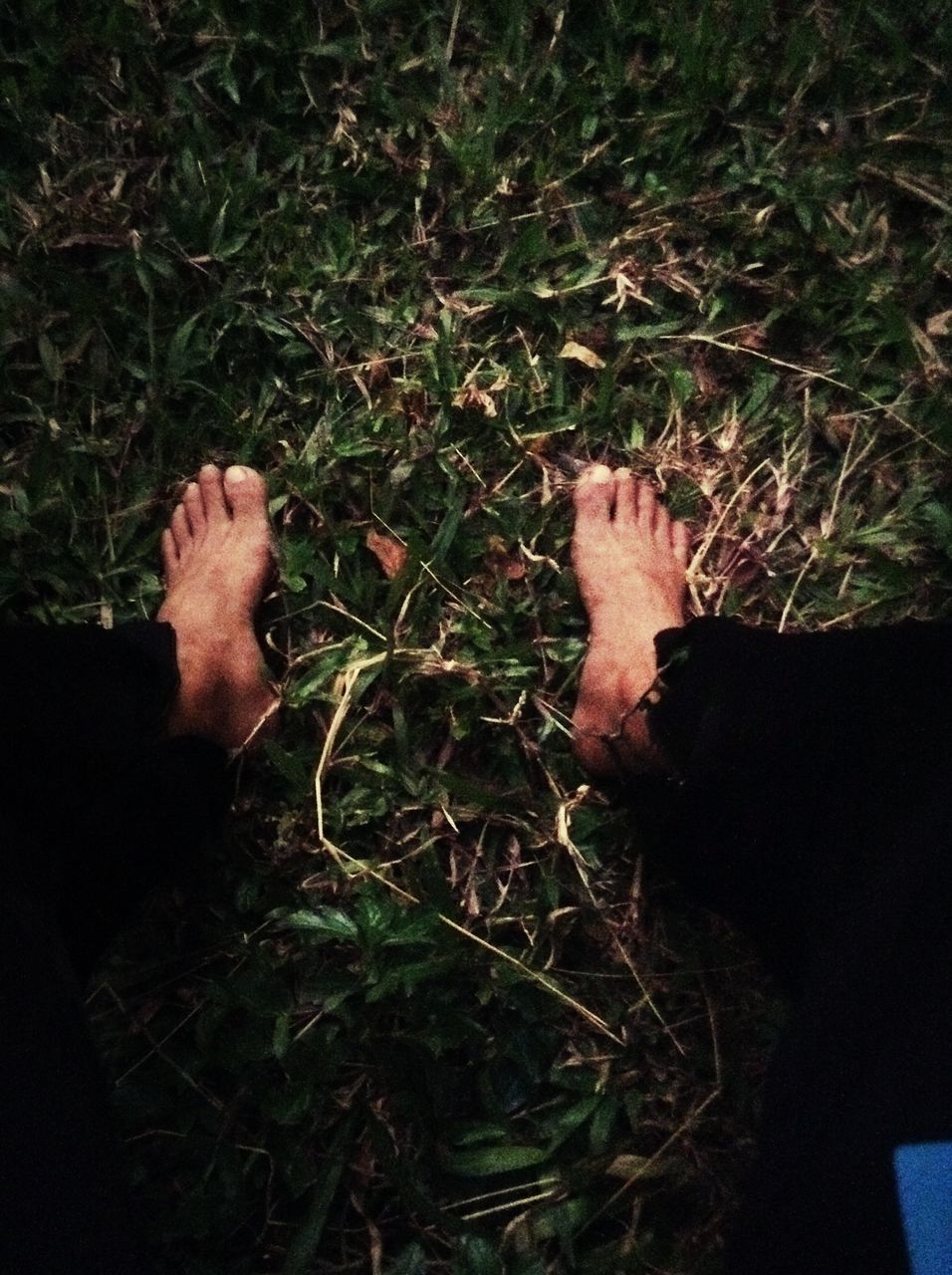 grass, barefoot, adventure, real people, men, human body part, one person, low section, friendship, nature, outdoors, day, people