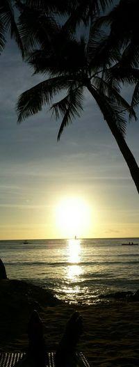 Yesterday sunset
