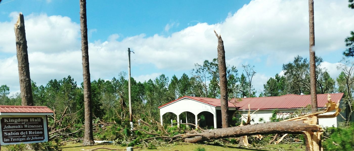 Hurricane Michael 2018 Hurricane Damage Extreme Weather Wind Destruction Storm Damage Nature Hurricane Storm Weather Hurricane Season  Wind Damage Georgia Tree Wood - Material Sky Cloud - Sky Hurricane - Storm