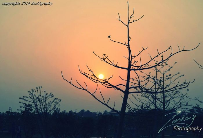 Sunset Good Evening Eco Park Kolkata Landscape_photography