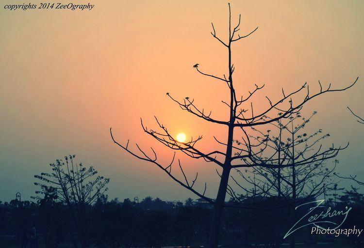 Sunset Good Evening Eco Park Kolkata Landscape_photography