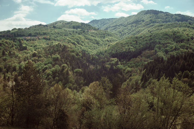 Brent Landscape Mountain Nature Outdoors Prealpi Bellunesi Prealps Sky First Eyeem Photo
