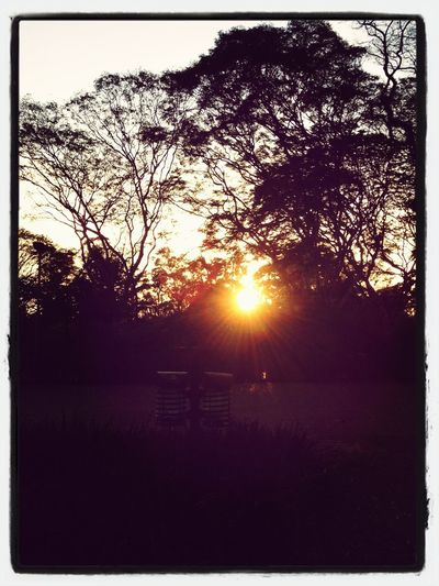 linda tarde no parque