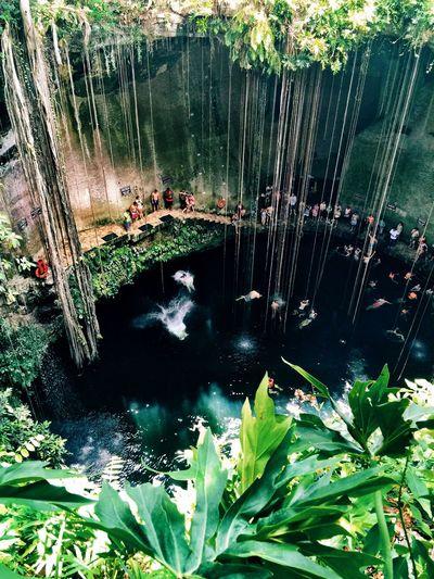 The Adventure Handbook Cenote Swimming Cancun Mexico