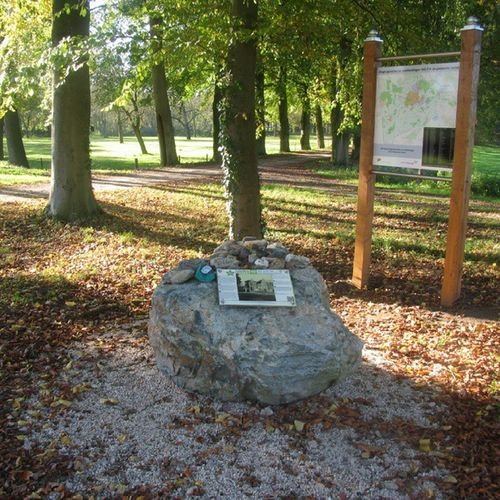 Visitgeijsteren Tree_captures TreePorn Trees nature_of_our_world