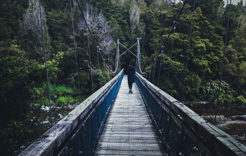 Newzealand vibes Traveling Home For The Holidays Bridge Dawn New Zealand The Way Forward Nature Footbridge Outdoors Beauty In Nature Tranquility One Person Miles Away Break The Mold The Great Outdoors BYOPaper! The Street Photographer Go Higher
