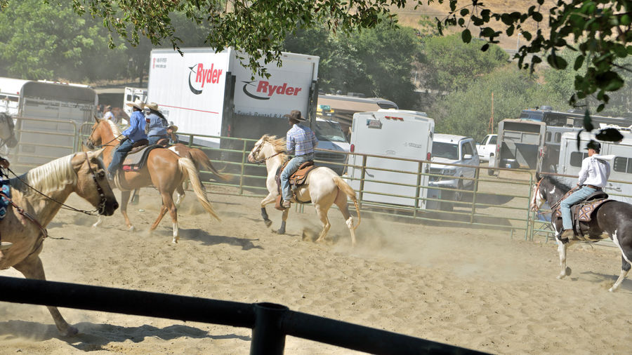 Cowboys & Cowgirls Warmup 1 Bill Pickett Rodeo Rowell Ranch Hayward, Ca. Warmup Horses Bill Pickett Born 1870 Jenks-Branch,Texas Cowboy Rodeo Legend ProRodeo Hall Of Fame Wild West Shows Bill Pickett Invitational Rodeo 33rd Anniversary Exhibition Equestrian Sport National Touring Rodeo Competition Professional Rodeo Cowboys Association Cowboys Cowgirls Corral Fence Horse Trailers Trucks
