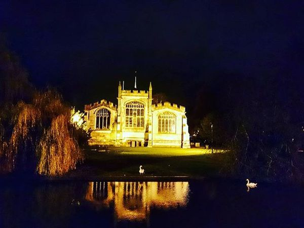 Two Swans near St. Mary's church, Hitchin.. Hitchin Hertfordshire Stmarys Church Parishchurch Swans Birds Nature Animals Night Illuminated Water Picturesque Picoftheday ICAN Sony Sonyxperia XperiaZ3