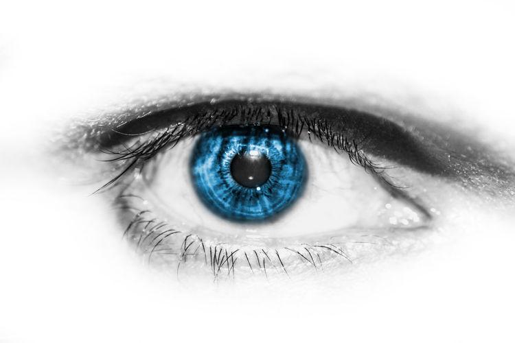 blue eye of a