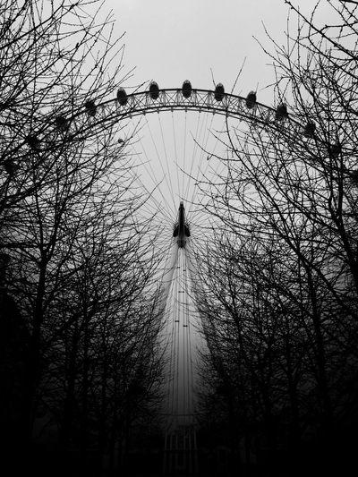 The London Eye Iphone 6 London Eye Black App Trees Branches Blackapp