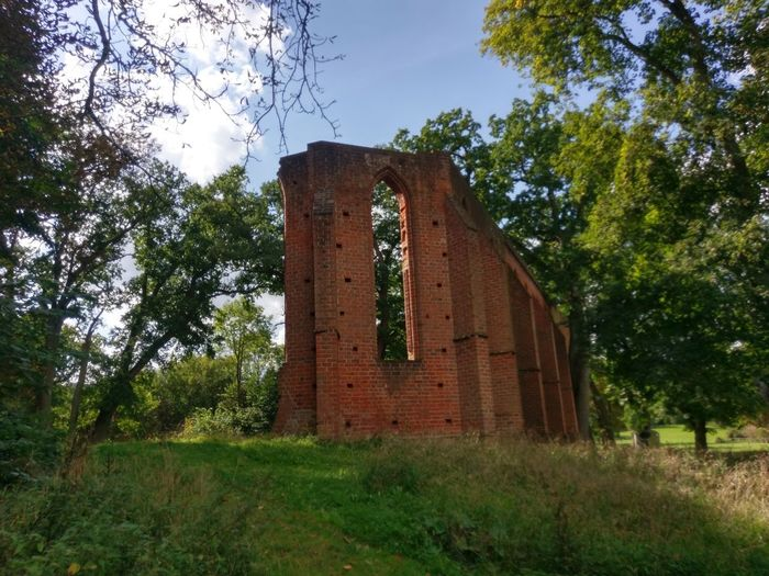 Ruin Of Boitzenburg Monastry Tree Old Ruin History Architecture Built Structure Abandoned Day Grass No People Outdoors Sky Nature Ancient Civilization