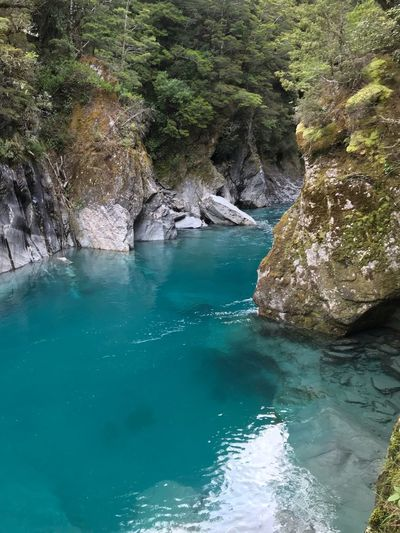 ✌🏻 Nice Reflection Lake Reflections In The Water Reflections Reflection Stone Trees Newzealand Blue Turquoise Colored Water Beauty In Nature Scenics - Nature Tranquility Tree Rock Nature Sea Land Blue Tranquil Scene Non-urban Scene Waterfront No People Solid Turquoise Colored Plant Rock - Object Day High Angle View