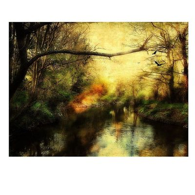 #squaready #distressedfx #handyphoto #byfleet #brooklands #surrey #river #riverwey #trees #tinyshutter #landscape #water #ipad #iphone #iphoneography Riverwey River IPhone Water IPhoneography Landscape Trees Ipad Brooklands Surrey DistressedFX Squaready Tinyshutter Handyphoto Byfleet