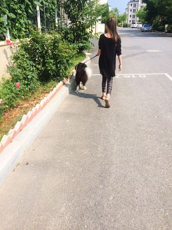 My Lovely Sister My Love 😚 My Lovely Dog Enjoying Life Cute Pets Relaxing