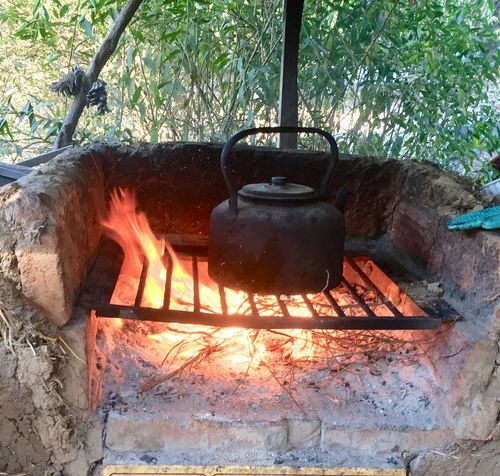 The teapot on the stove Fogon Flame Burning Heat - Temperature No People Preparation  Outdoors Wood - Material