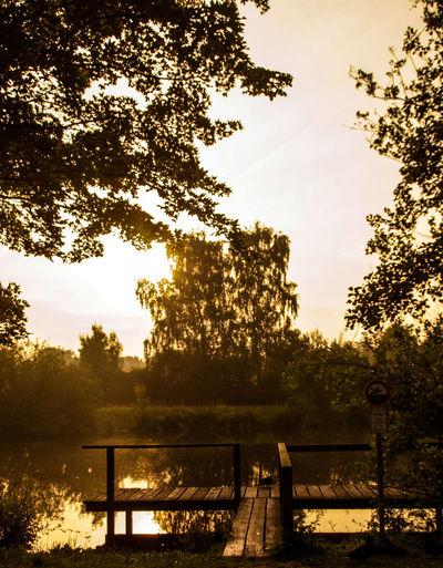 Steg Für Dich Sitzen Und Seele Baumeln Lassen In Thoughts With You Genießen Beauty In Nature Idyllic Tranquility Tranquil Scene Beautiful Scenery Beautiful Morning Sunrise Early Morning Scenics Scenery Calm Tree Sky