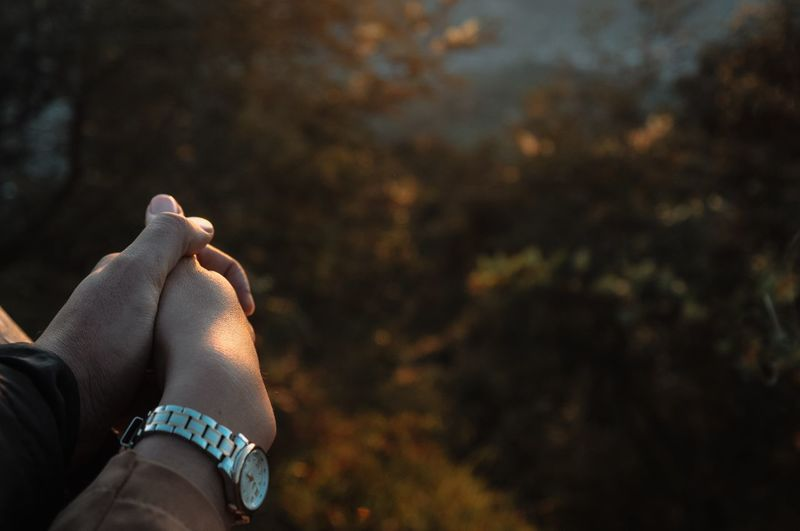 Cropped image of couple holding hands in forest