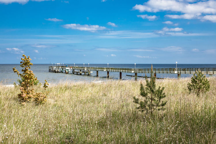 Pier on the Baltic Sea coast in Koserow, Germany. Baltic Sea Beach Beauty In Nature Cloud - Sky Day Grass Growth Horizon Over Water Jetty Koserow Nature Outdoors Pier Sand Scenics Sea Sky Tourism Tranquil Scene Travel Destinations Tree Usedom Vacation Vacations Water