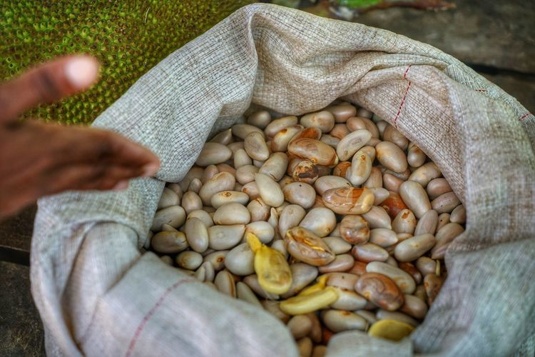 Human Hand Human Body Part Hand One Person Food Food And Drink Freshness Holding Sack Healthy Eating Wellbeing Large Group Of Objects Day High Angle View Agriculture Real People Unrecognizable Person Close-up Outdoors Finger Legume Family