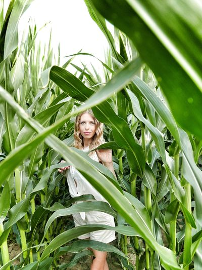 ▪rationally lost▪ Blue Eyes Summer Relaxing Blonde Model Vacations Siamdiscovery Godiscoversummer Italy Sexygirl Summer Exploratorium Blond Hair Portrait Smiling Looking At Camera Leaf Happiness Young Women Grass Close-up Corn - Crop Sweetcorn Agriculture Corn On The Cob Cultivated Land Maze Cereal Plant