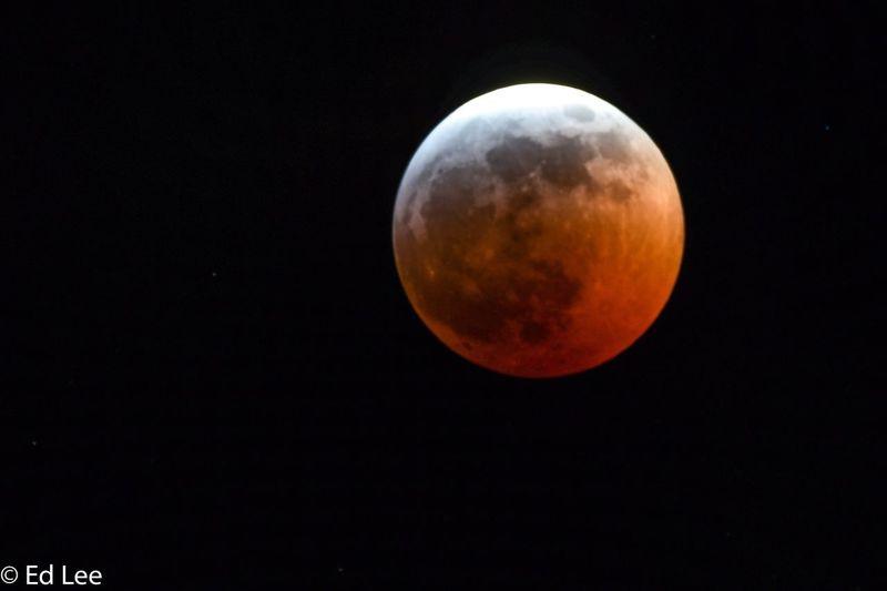 Eclipse from Minnesota Eclipse Moon Minnesota Two Harbors Malephotographerofthemonth Space Astronomy Night Sky Full Moon Scenics - Nature