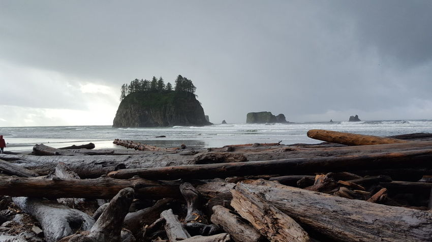 Second Beach. WA Lapushwa Lapush Washingtoncoast Beauty In Nature Stormy Weather Solitude By The Water Beach Pnwnaturescapes Pnwlife Beach Sea Nature Water Sky Wave Rock - Object Beauty In Nature Horizon Over Water No People Outdoors Day