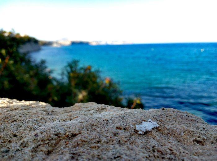 Macro Sealandscape New Thinking New Posibility Fall Sun Calpe Alicante España Turism