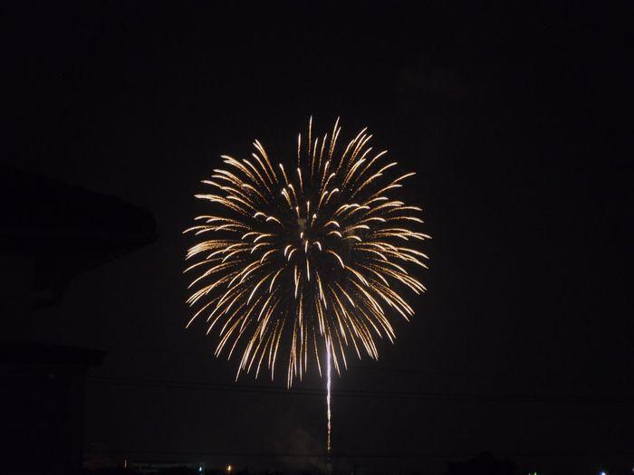 花火 Fireworks 黄色 Yellow 日本 Japan Yellow Fireworks