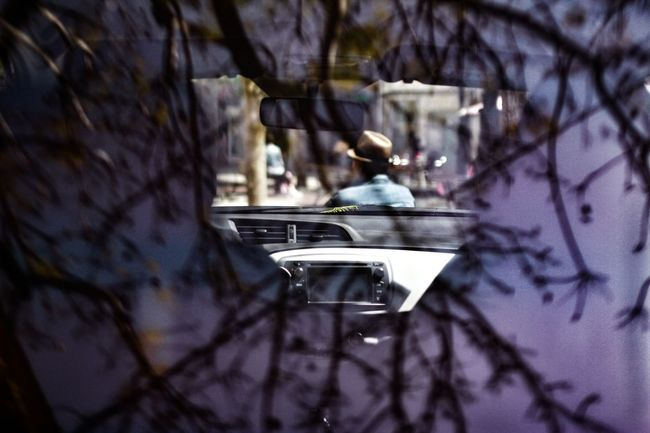 Callejeando Reflejos Traselcristal Street Photography Streetphotography Robados Real People Tree Close-up