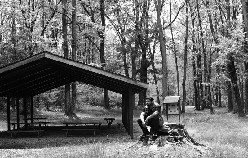 Stumped by Kesi J. Marcus Adult Adults Only Adventure Architecture Beauty In Nature Black And White Built Structure Camping Day Forest Full Length Grass Leisure Activity Lifestyles Nature One Person Outdoors People Real People Sitting Tent Tree Women Young Adult Go Higher The Great Outdoors - 2018 EyeEm Awards