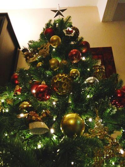 Christmas Tree Christmas Christmas Decoration Christmas Ornament Celebration Christmas Lights Tradition Illuminated Christmas Bauble Holiday - Event Holiday Christmas Orniments Christmas Lights Tradition