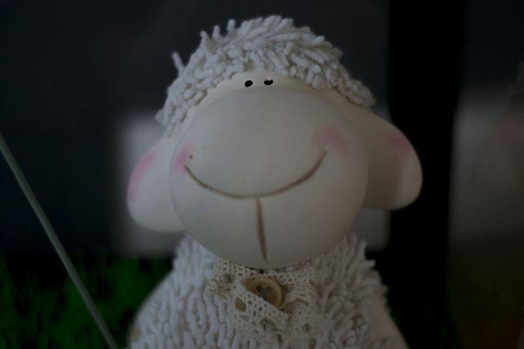 Animal Themes Close-up Focus On Foreground Indoors  Little Sculpture Nikon Nikon 50mm F/1.8 Nikon D3100 Sculpture Selective Focus Sheep White Color