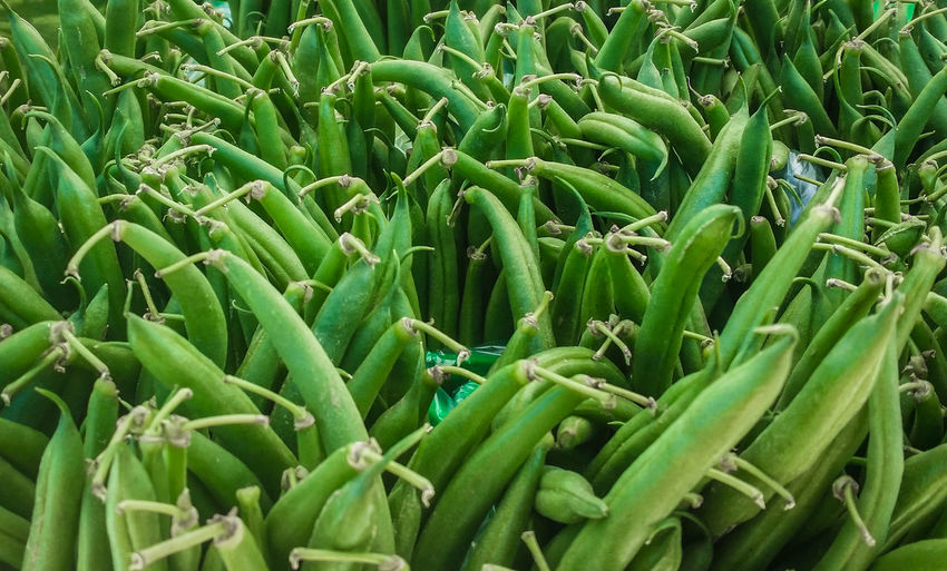 Autumn Beans Choice Cooking Farmers Market Green Raw Abundance Close-up Fresh Full Frame Green Color Harvest Ingredient Legume Family No People Organic Outdoor Outdoors Recipe Stall Upright Vegetable Food Stories