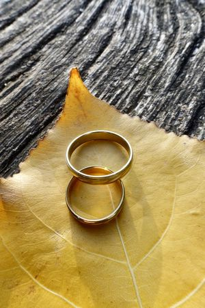 Wedding rings on autumn leaf Hochzeitseinladung Hochzeit Jewellery Nobody Wedding Invitation Wood Background Copy Space Wallpaper Copy Space Germany Herbst Ring Wedding Ring Jewelry Still Life Table Metal High Angle View No People Close-up Two Objects Wedding Wood - Material Love Gold Event Life Events Gold Colored Engagement Ring