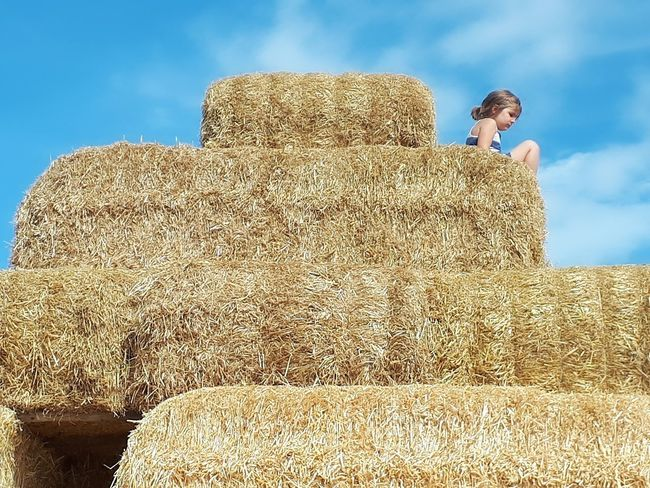 Sky Pyramid Outdoors Nature Barnlife Hay Hay Bales Haystack Childhood Gloriousday EyEmNewHere