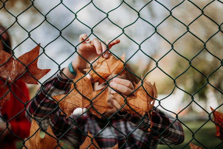 Baby girl holding leaves behind chainlink fence during autumn