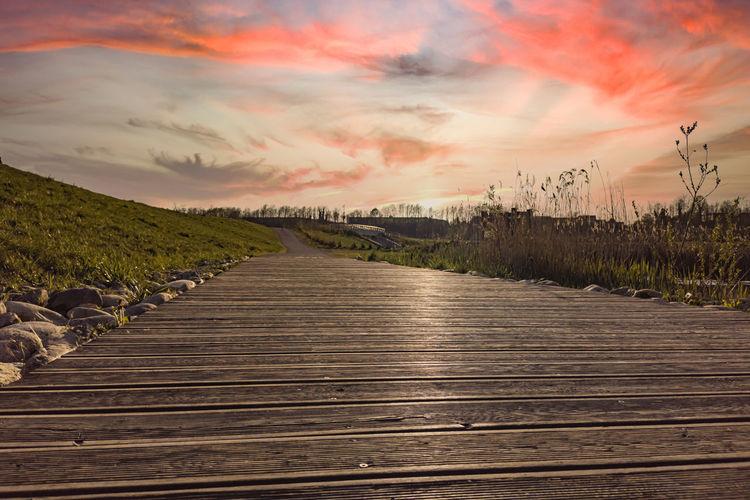 Boardwalk amidst plants on land against sky during sunset