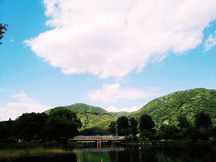 South Korea 한국 Jarasum 자라섬 The Week On EyeEm
