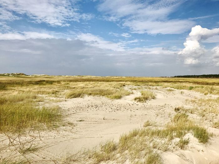 St. Peter Ording Landscape Sky Tranquil Scene Tranquility Grass Scenics Non-urban Scene Solitude Plant Cloud Nature Beauty In Nature Travel Destinations Horizon Over Land Countryside Growth Remote Outdoors Tourism Cloud - Sky Tranquility Calm Nature Schleswig-Holstein