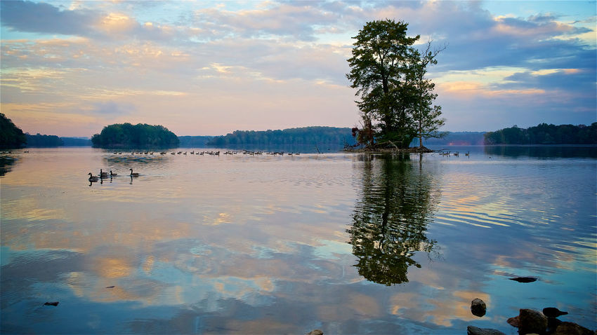 Beauty In Nature Cloud - Sky Day Lake Nature No People Outdoors Reflection Scenics Sky Sunset Tranquil Scene Tranquility Tree Water