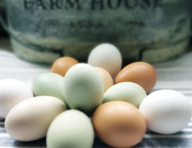 Close-up of eggs in container
