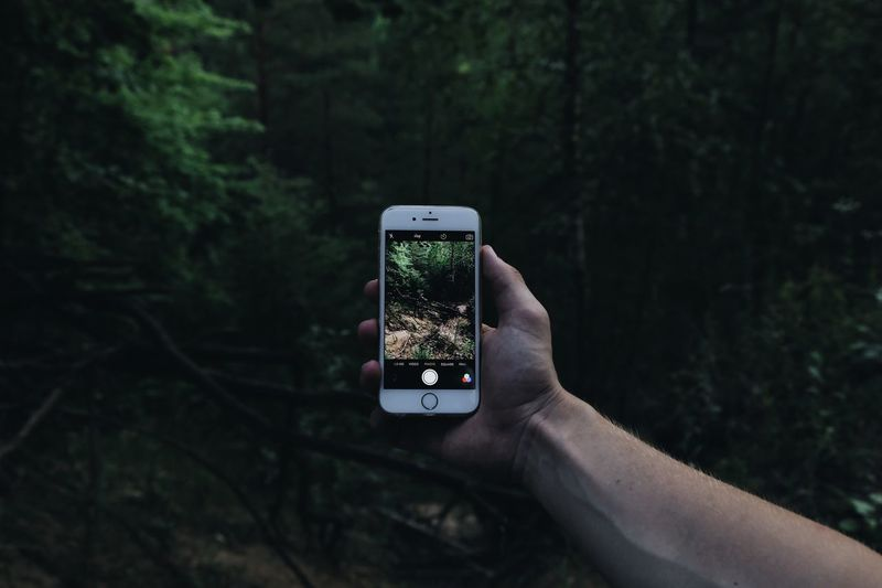 Cropped image of woman photographing through smart phone in forest