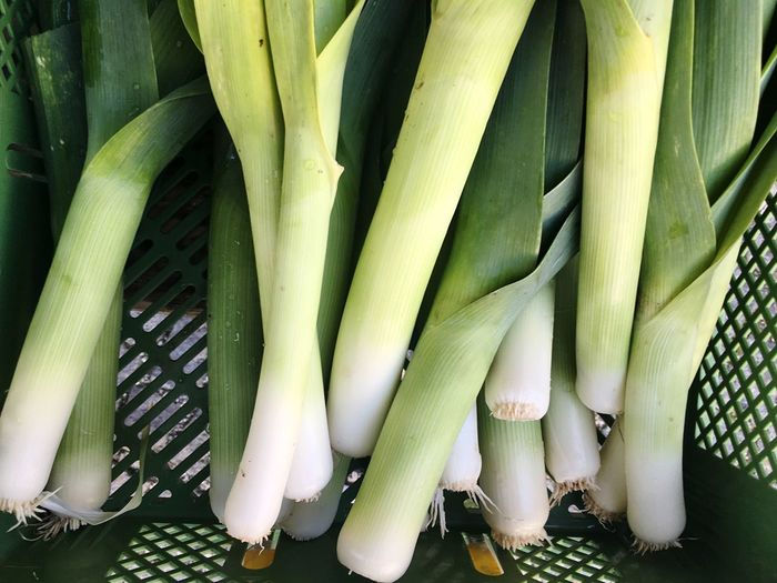 Directly above shot of leeks in container