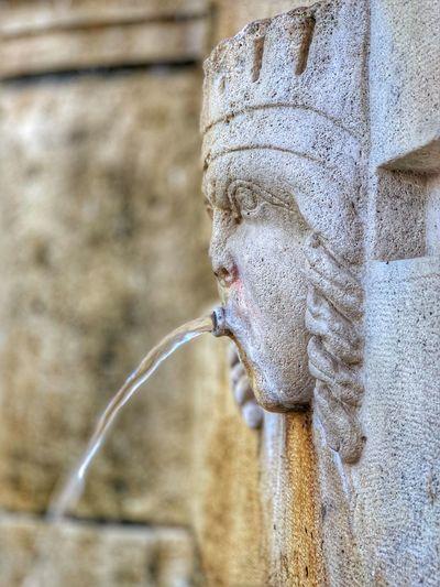 Fountain Focus